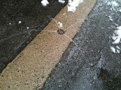 道路にあった雪を溶かす水