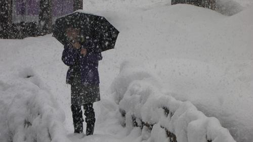 雪の中のオデさん